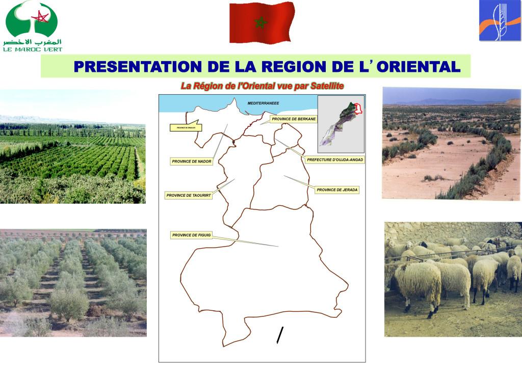 Présntation de la région de l'Oriental1-1