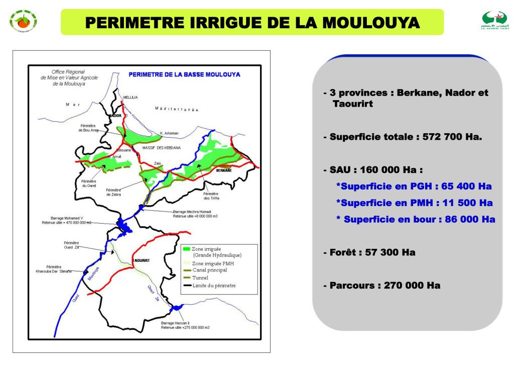Présntation de la région de l'Oriental1-4