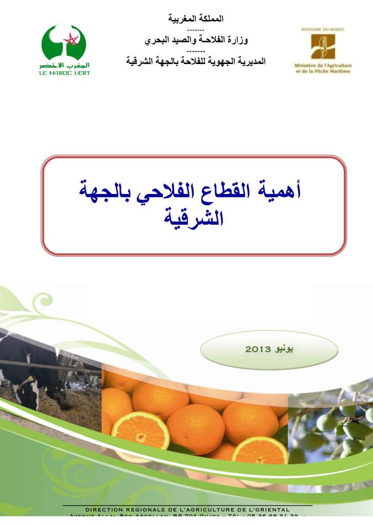 Microsoft Word - Secteur agricole dans l'Oriental VA.docx