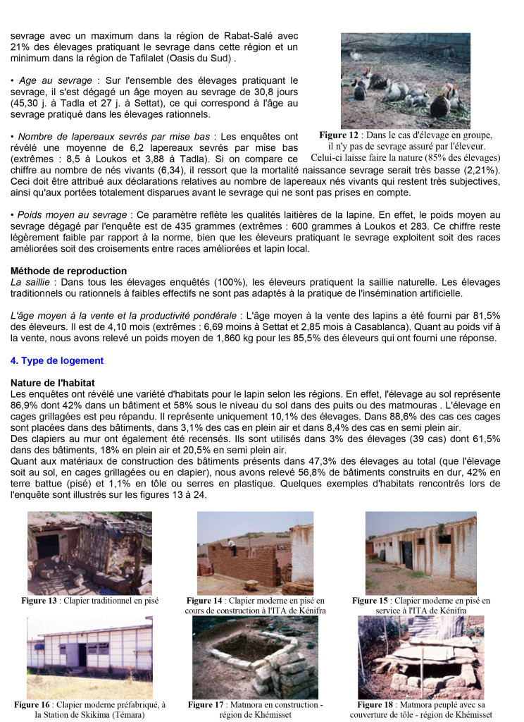 Microsoft Word - CUNICULTURE Magazine Volume 33-099.doc