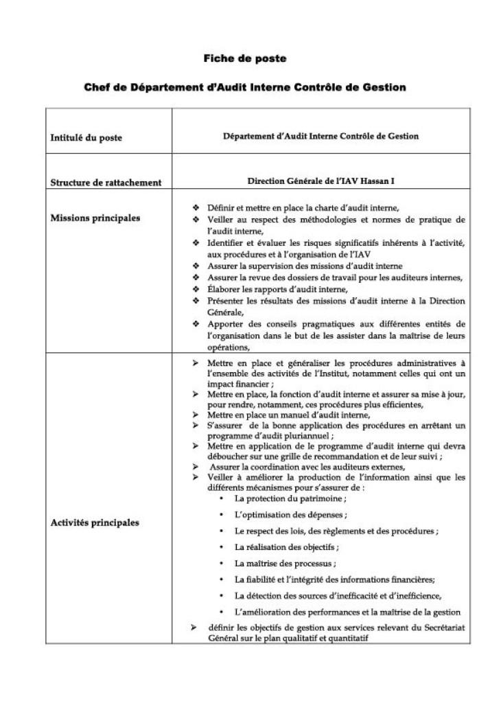 fp_chef_auditinterne_controle_de_gestion-1