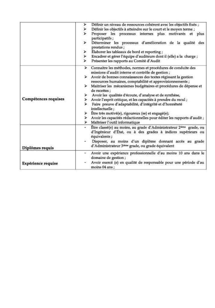 fp_chef_auditinterne_controle_de_gestion-2