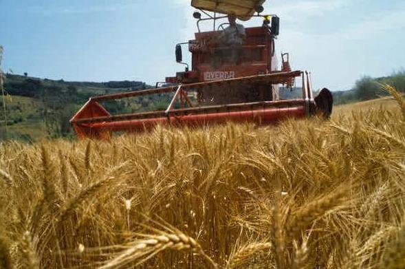 عملية الحصاد