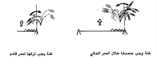 الرسم 7 :  مهمة لفراقين الثانويين