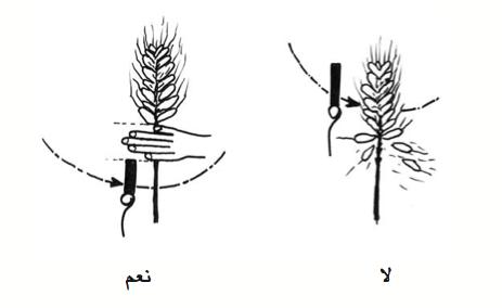الرسم 8 : ضبط علو الطاحونة