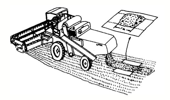 الرسم 15 : معاينة الفاقد من الحبوب وراء الحصادة الدرّاسة CFMA