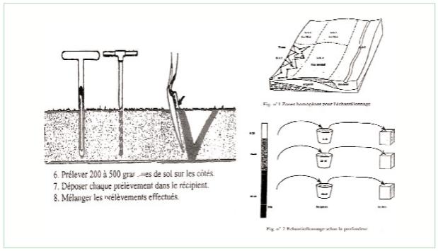 تبين لنا الصورة كيفية تقسيم الحقل إلى مناطق متجانسة و طريقة و كيفية و أدوات أخذ العينات